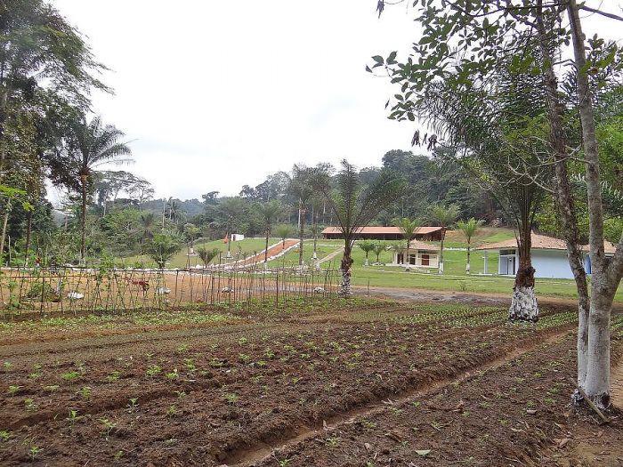 Maiombe Resort - Imagem 2