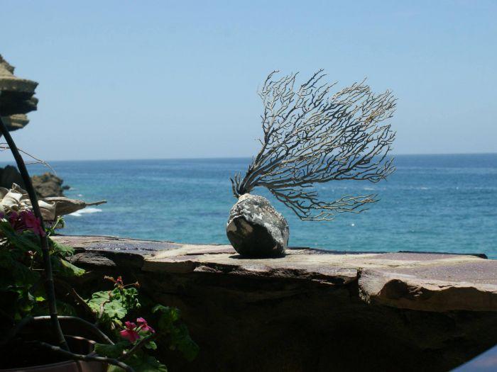 Praia da Mariquita - Image 6
