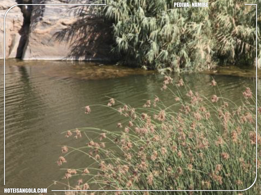 Lagoas de águas termais em Pediva | Pedro Carreno