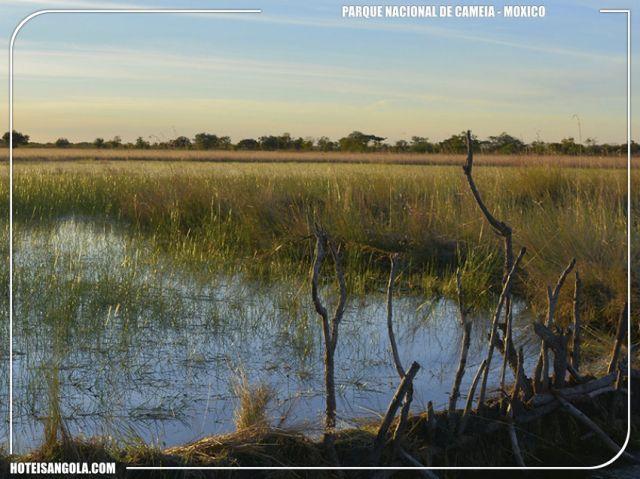 Parque Nacional de Cameia