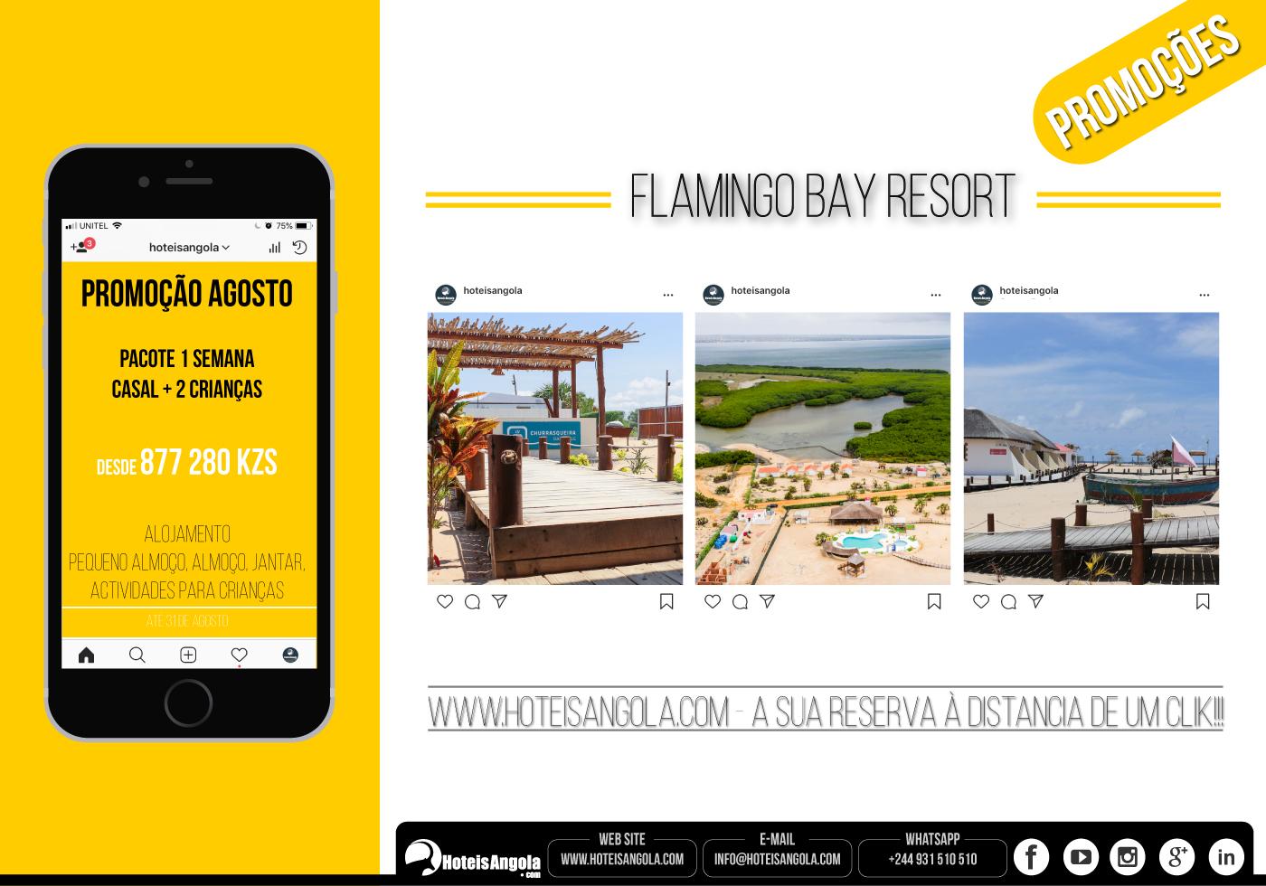 PACOTE - Flamingo Resort