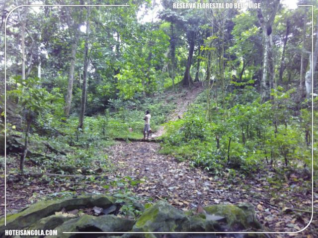 Reserva Florestal do Beu